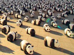 Pandasontour