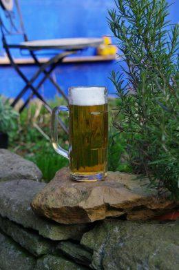 bier3sp