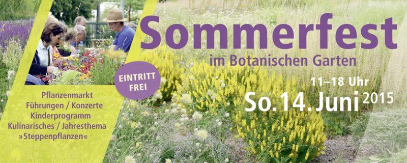 Sommerfest_Garten